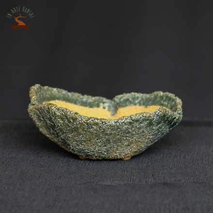 Pot rond 100 mm. pour shitakusa