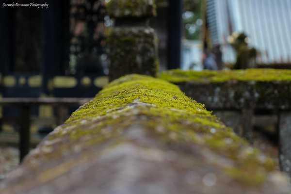 Dettaglio di una balconata in pietra a Nikko