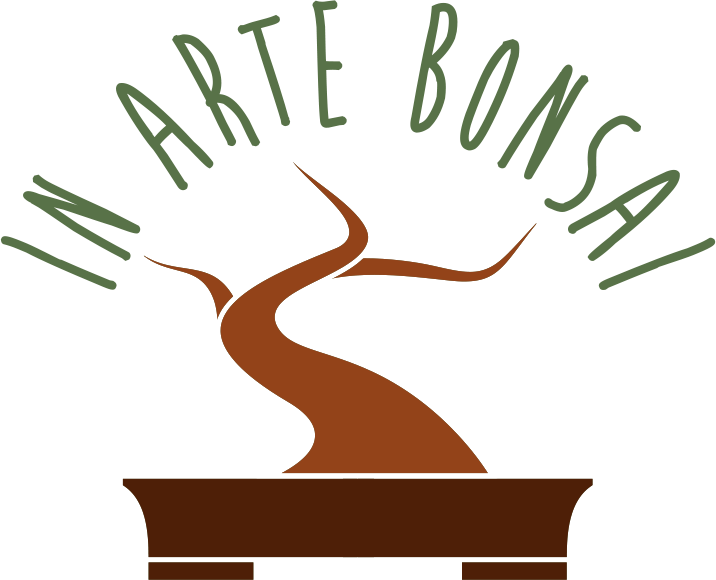 In Arte Bonsai